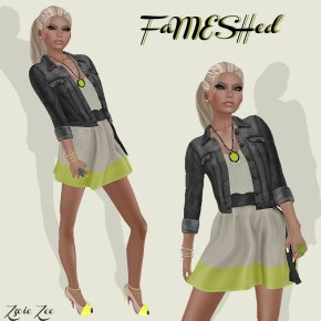 FaMESHED May 2013